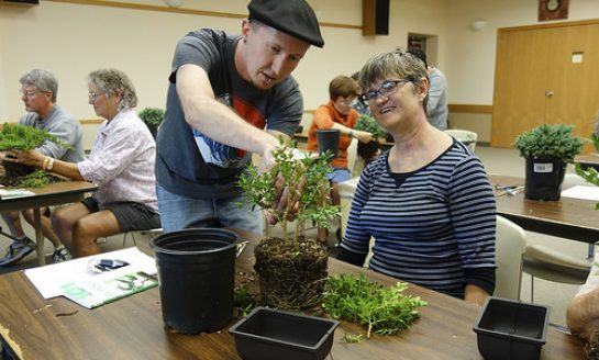 Learn Beginning Bonsai at Audubon on Sunday, July 23