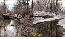 Conservation District Partners with Chautauqua County Government and Bemus Point Landowners to Address Erosion Problem