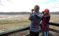 Take a Happy Hour Hike at Audubon on the Spring Equinox, March 20