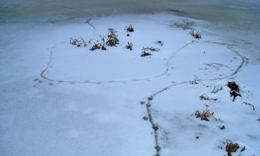 Little Explorers Learn about Making Tracks at Audubon, Saturday, March 10