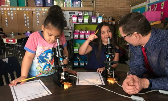Ring School 2nd Graders Discover More About Insects Through Microscopes