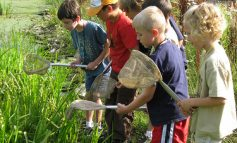 Time to Sign Up for Audubon Summer Day Camp