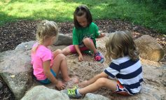 Audubon Nature Play Day is Sunday Afternoon, June 17