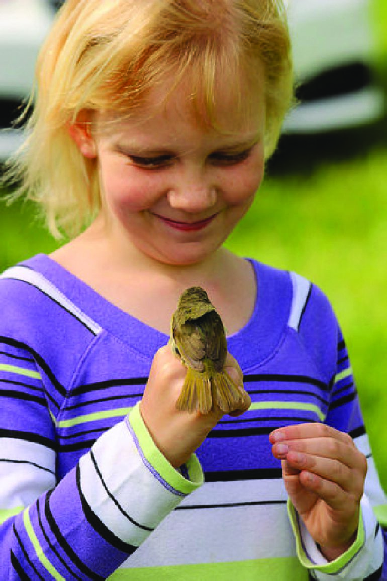 You Can Observe National Bird Banding Program at Audubon Community Nature Center